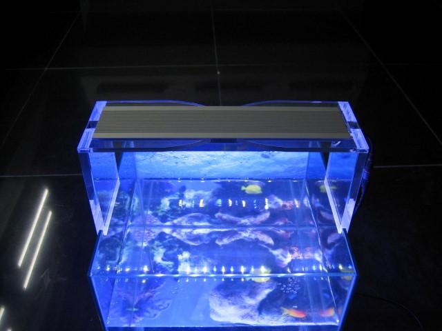 Gekleurde Slaapkamer Verlichting : LED Aquarium Lamp 12Watt 283x69x9mm ...