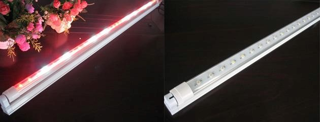 LED Growing Light